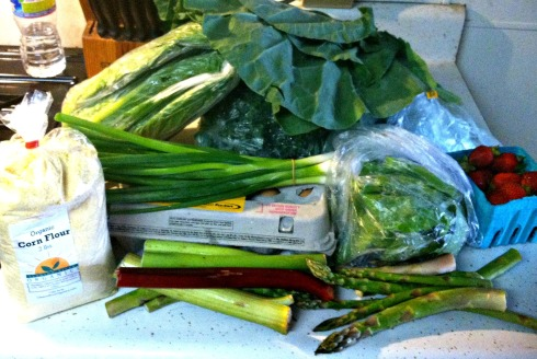 One of our early CSA shares from last year with Clarion River Organics.