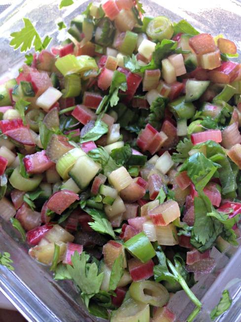 Cucumber-Rhubarb-Salsa